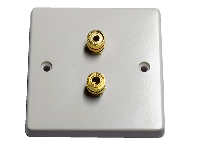 Single Gang Speaker Wall Plate